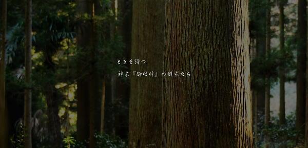 御杖村神末の古木たち