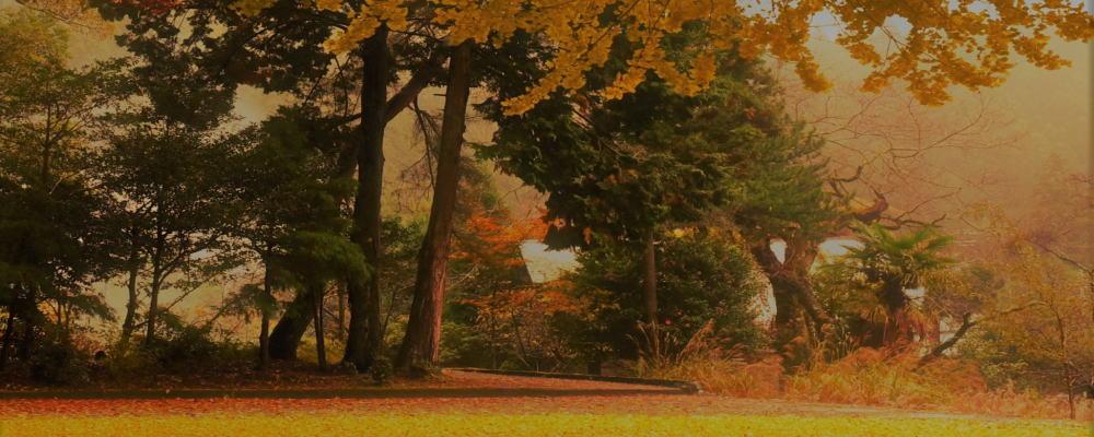 御杖村の秋