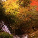 10月13日 日本の原風景残るWOOD JOB!ロケ地【美杉町太郎生】紹介