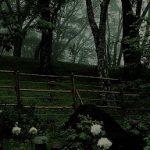 5月14日【2017】奈良県御杖村 丸山公園は霧に包まれ幻想世界