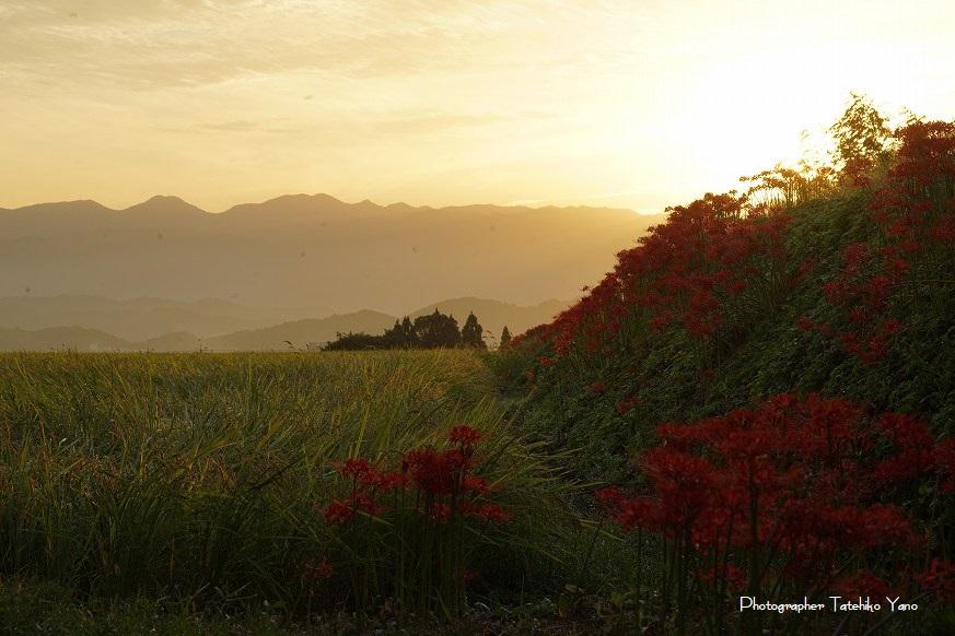 日本の風景【奈良の秋・秋の気配と秋の色】