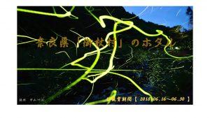 奈良県御杖村のホタル(蛍)観賞週間【2018】のご案内