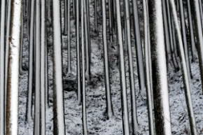 秘境 御杖村桃俣の冬景色