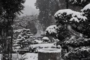 奈良県御杖村 草野の庭