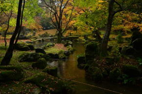 北畠氏館跡庭園の紅葉
