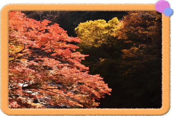奈良県御杖村 新観光名所