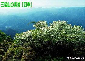 御杖村の三峰山