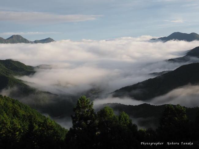 御杖村の雲海