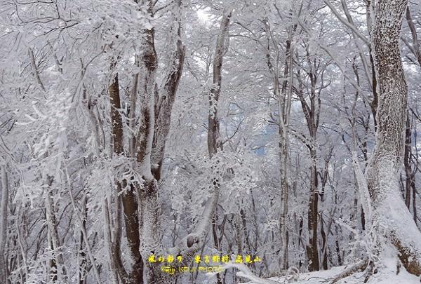 東吉野村 高見山 霧氷