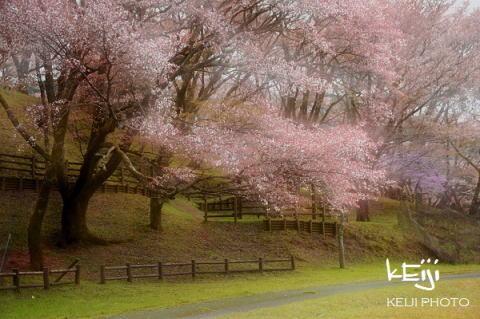 日本の風景 風景写真