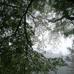 10月17日 奈良県御杖村丸山公園の紅葉は。。。