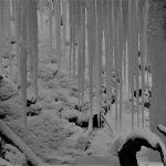 1月27日【2018】御杖村不動の滝「奈良県」氷の芸術・完成までもう少し。。。