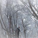 1月19日【2019】三峰山の幻想的な世界「霧氷」の絵はがきを。。。あなたに