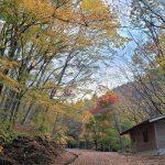 11月11日【2020】令和2年の秋 色鮮やかな三峰山裾野『奈良』の紅葉