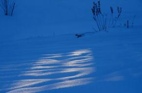 奈良県御杖村 丸山公園 雪