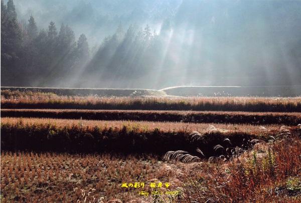 桜井市 原風景と朝靄